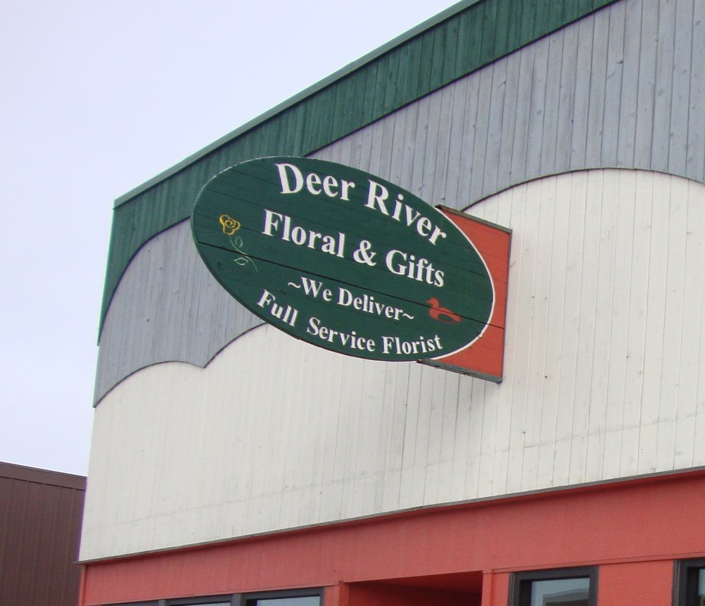 Deer River Floral & Gifts: 115 Main Ave E, Deer River, MN