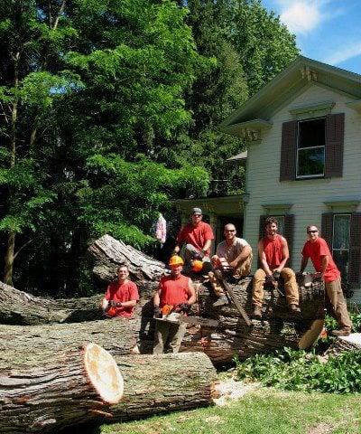 Oakes Tree Service: 3670 Lake Rd N, Brockport, NY