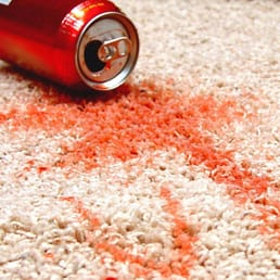 D S Superior Steam Cleaning Carpet Upholstery Cleaners Carpet