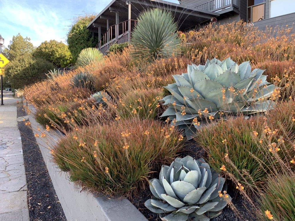 Farallon Gardens: Berkeley, CA