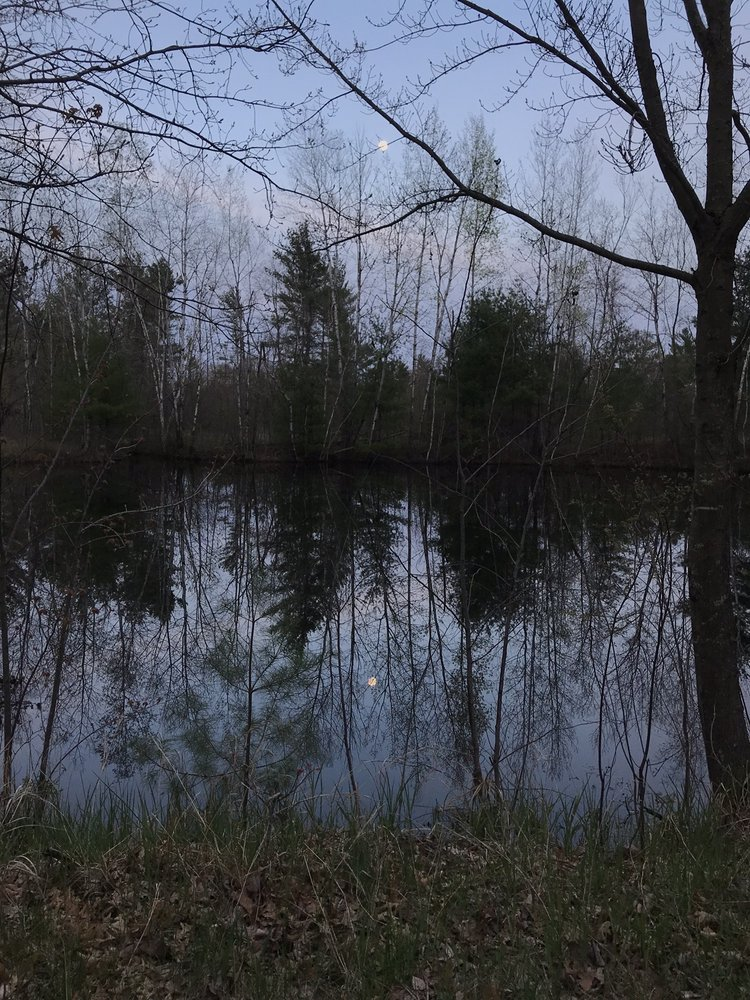 Woods Edge Campground: 10558 Freedom Rd, Tomah, WI