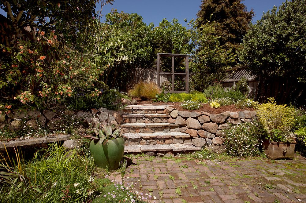Photo of Janet Moyer Landscaping - San Francisco, CA, United States - Photos For Janet Moyer Landscaping - Yelp