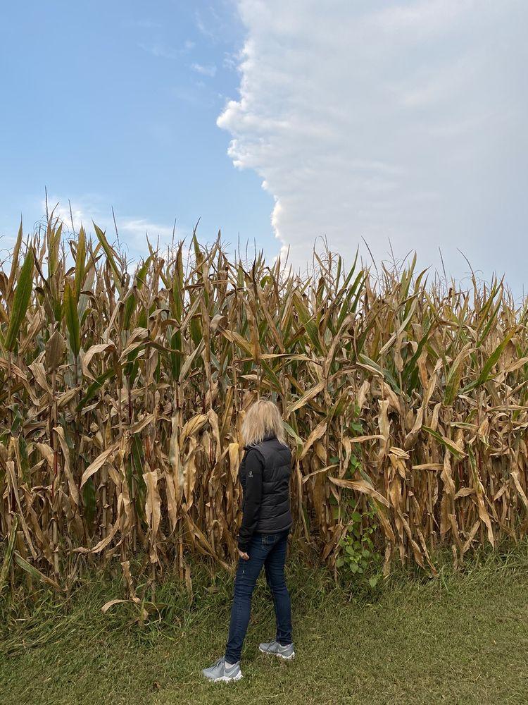 Pheasant Run Farm: 200 Marticville Rd, Lancaster, PA