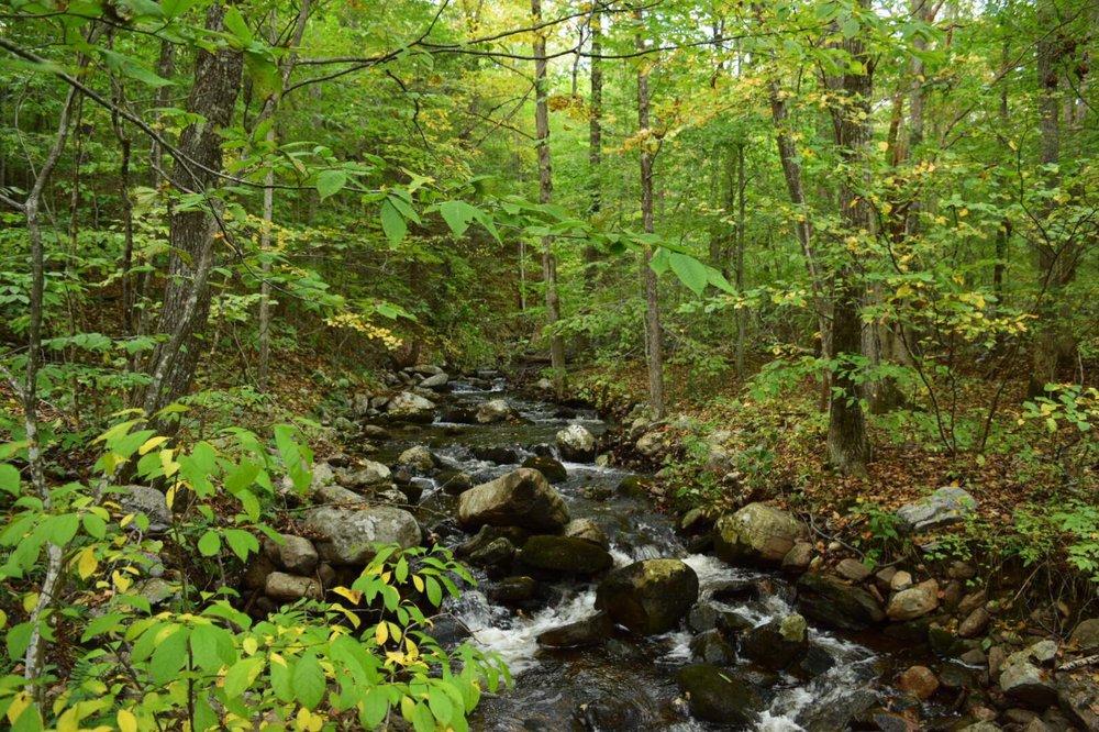 Stokes State Forest: 1 Coursen Rd, Branchville, NJ