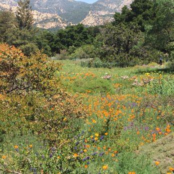 Photo Of Santa Barbara Botanic Garden   Santa Barbara, CA, United States.  Can