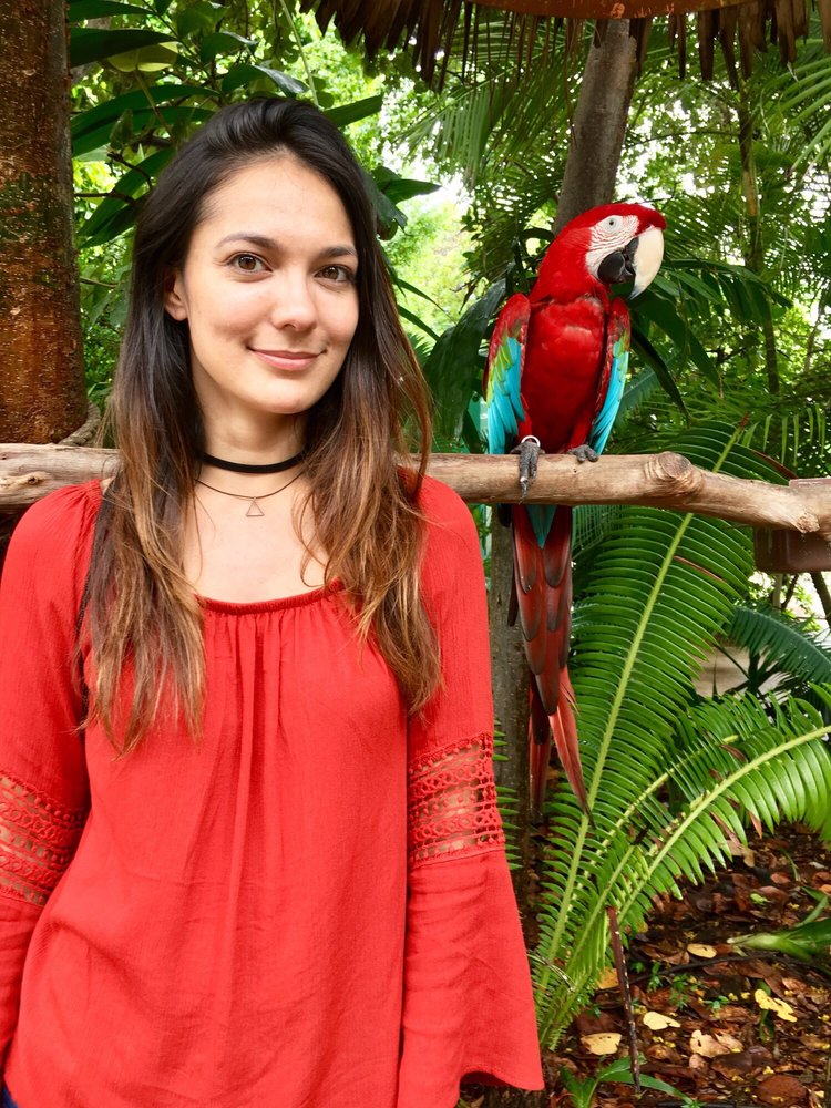 Jungle Island: 1111 Parrot Jungle Trl, Miami, FL