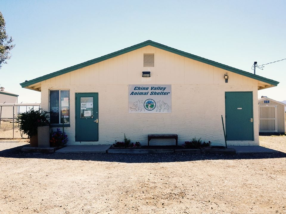 Chino Valley Animal Shelter: 1950 N Voss Dr, Chino Valley, AZ