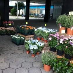 blomsterforretning østerbro