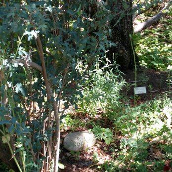 ABQ BioPark Botanic Garden - 468 Photos & 88 Reviews - Botanical ...