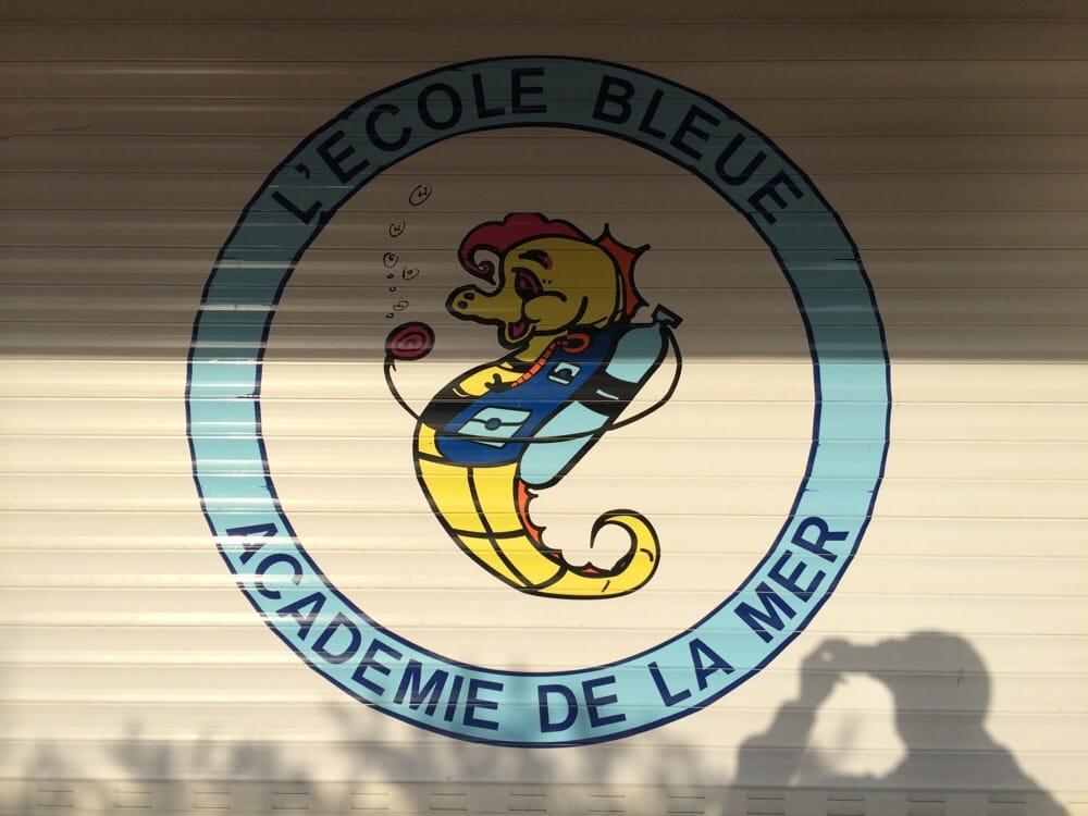Ecole Bleue: Los Fresnos, TX
