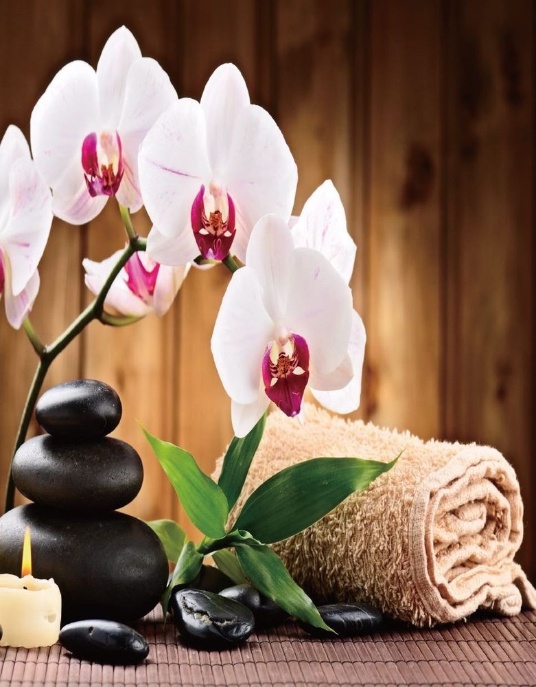 Total Massage: 3544 Knickerbocker Rd, San Angelo, TX