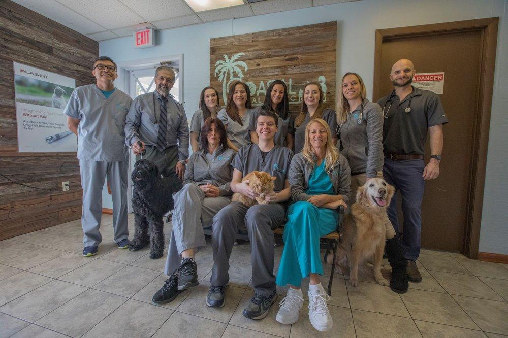 Coastal Animal Clinic: 1019 Highland Ave NE, Largo, FL