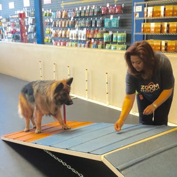 Zoom Room Dog Training - 61 Photos & 54 Reviews - Pet Training ...
