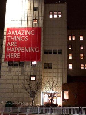 New York Presbyterian Hospital of Queens 5645 Main St Flushing, NY