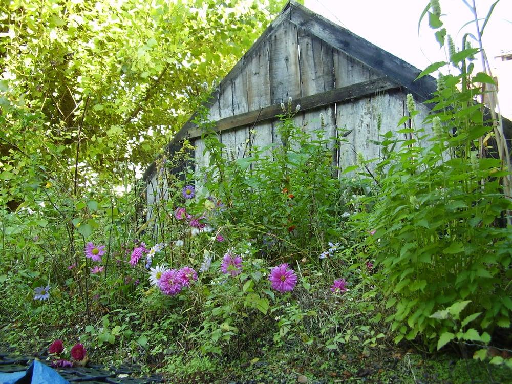 Un jardin sur le toit landscape gardeners 33 rue for Le jardin d alix lille