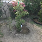 Photo Of Atkins Nursery Fallbrook Ca United States Gwen From