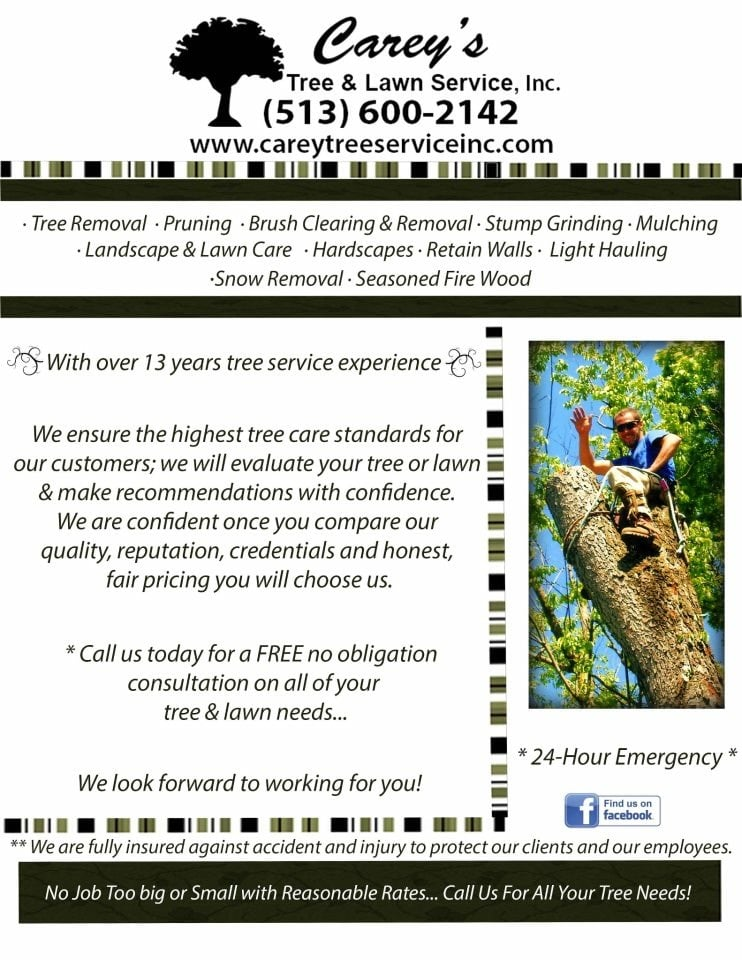 Carey's Tree Service: 5642 Wilmington Pike, Aurora, IN