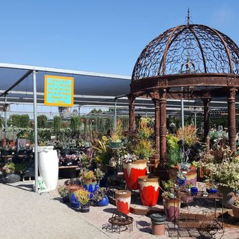Marina del rey garden center 229 photos 86 reviews nurseries gardening 13198 mindanao for Maria s garden center