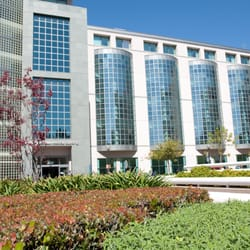 Ucla Center For Obesity And Metabolic Health Weight Loss Centers