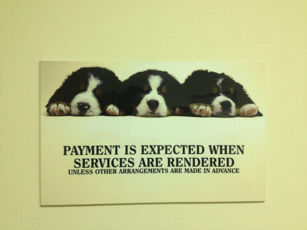 Kanawha City Veterinary Hospital: 5405 Maccorkle Ave SE, Charleston, WV