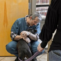 c740269124 Inman Park Animal Hospital - 44 Photos   76 Reviews - Veterinarians ...