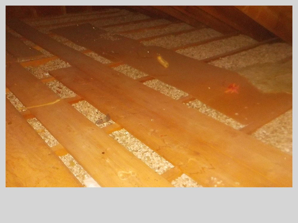 Zonolite asbestos insulation in attic - Yelp