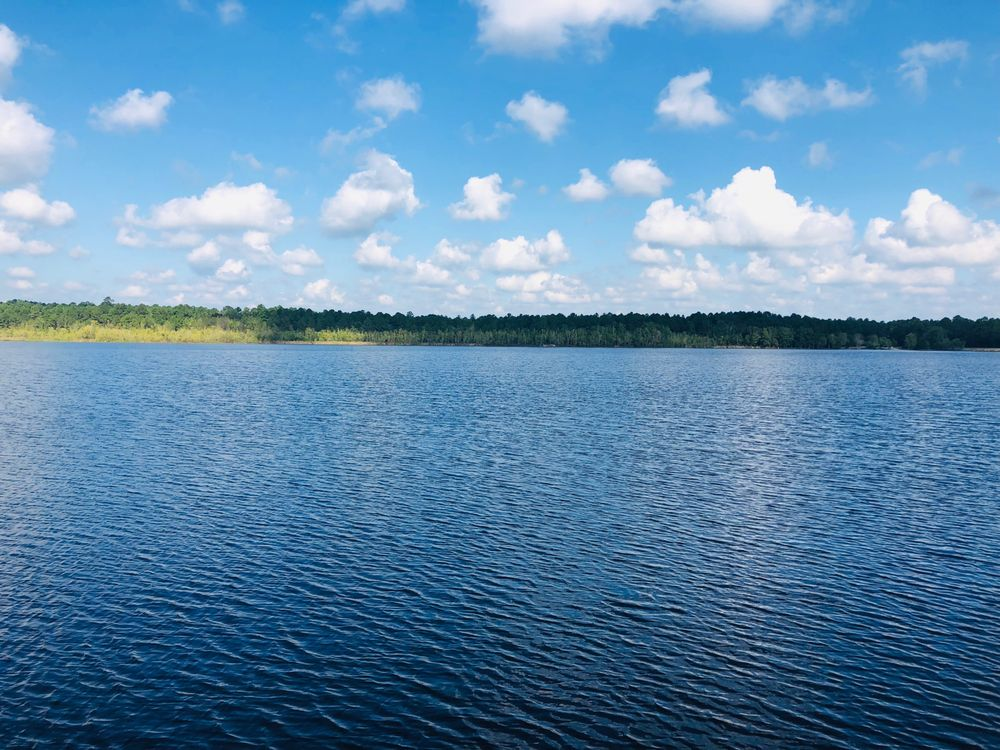 Lake Warren State Park: 1079 Lake Warren Rd, Hampton, SC