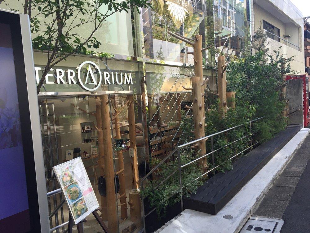 Terrarium Omotesando
