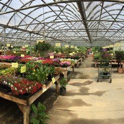 Photo Of Edgewood Nursery Garden Wa United States Inside Is