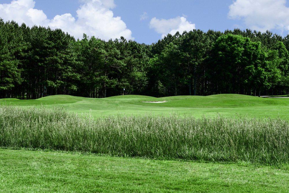 Nob North Golf Course: 298 Nob North Dr, Cohutta, GA