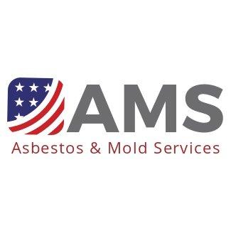 Asbestos and Mold Services: 3859 Sylon Blvd, Hainesport, NJ