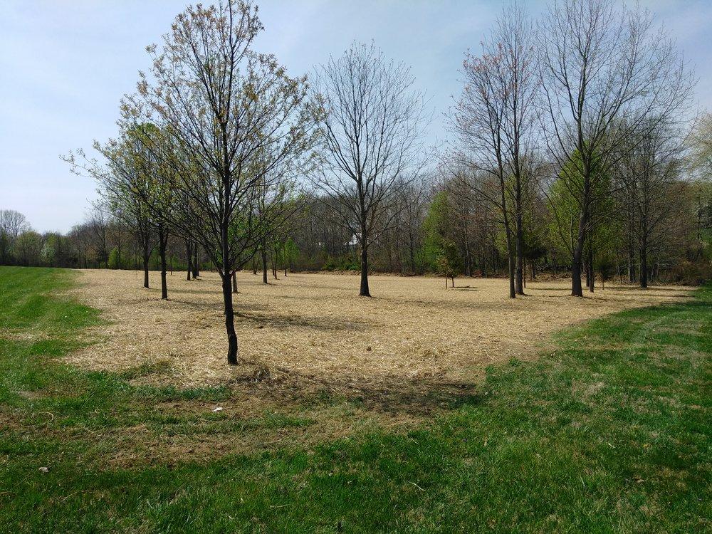 Hervet Landworks: 3974 Wistman Ln, Myersville, MD