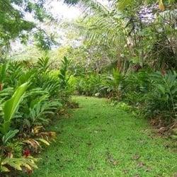 Photo Of Hana Maui Botanical Gardens   Hana, HI, United States. Garden Walk