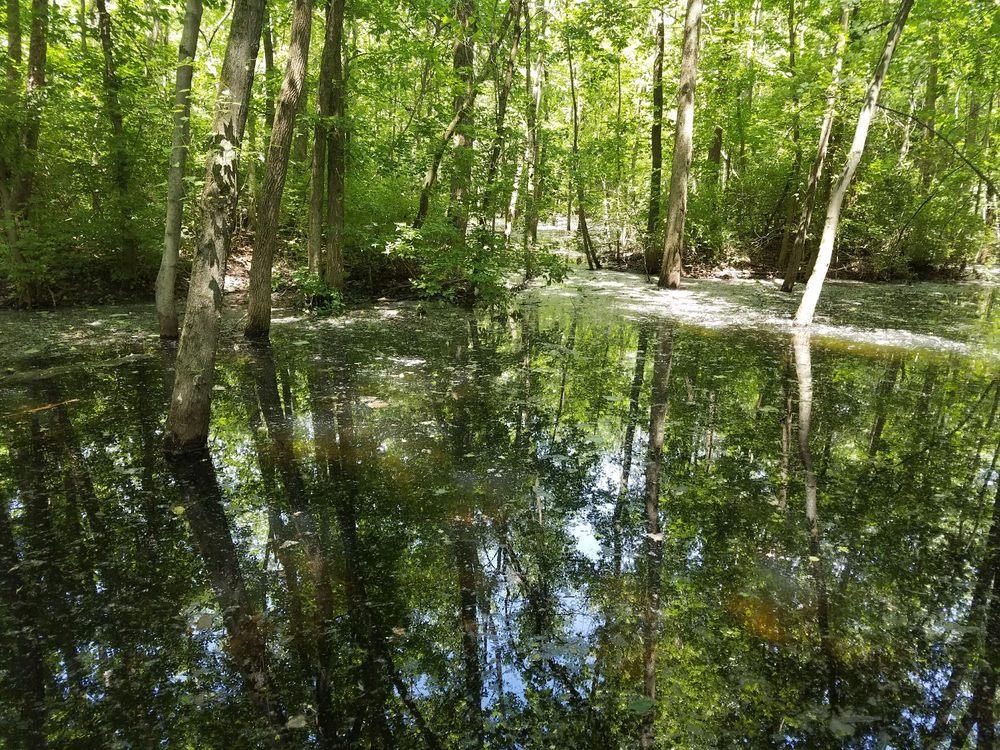 Rangeline Nature Preserve: 1200 S Rangeline Rd, Anderson, IN