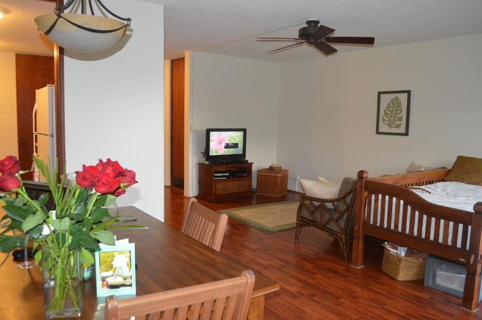Zane real estate property management llc agenzie for Lucernari di hawaii llc
