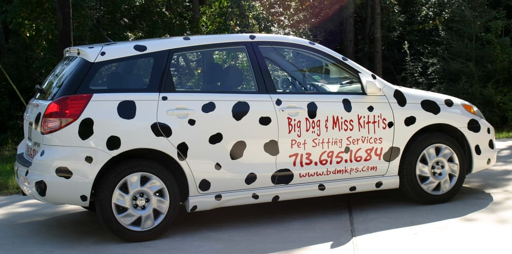 Big Dog & Miss Kitti's Pet Sitting Services: 448 W 19th, Houston, TX