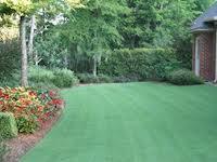 Southern Lawns: 1825 Opelika Rd, Auburn, AL