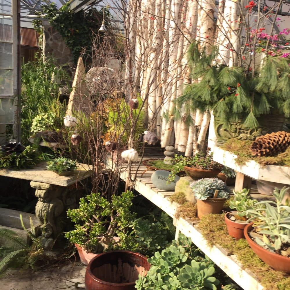 Weed Lady - Landscaping - 9225 Fenton Rd, Grand Blanc, MI - Phone ...