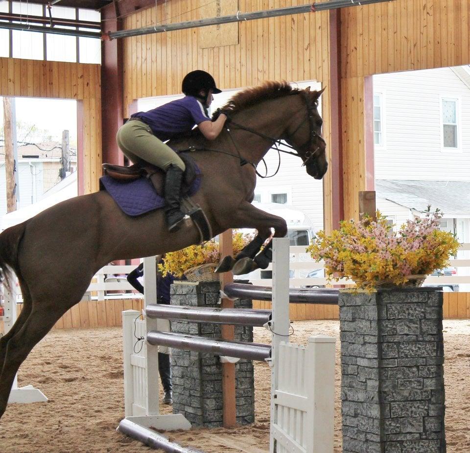 New York Equestrian Center Ltd 51 Photos Amp 14 Reviews