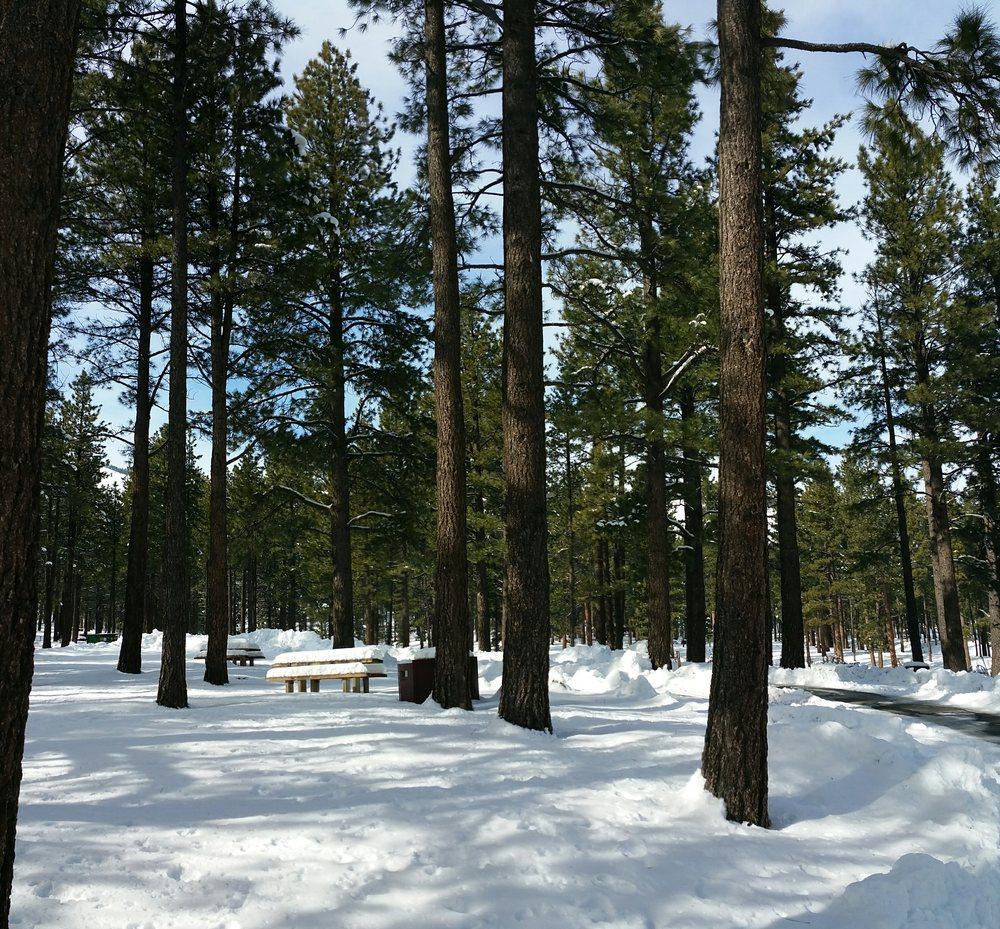 Davis Creek Regional Park