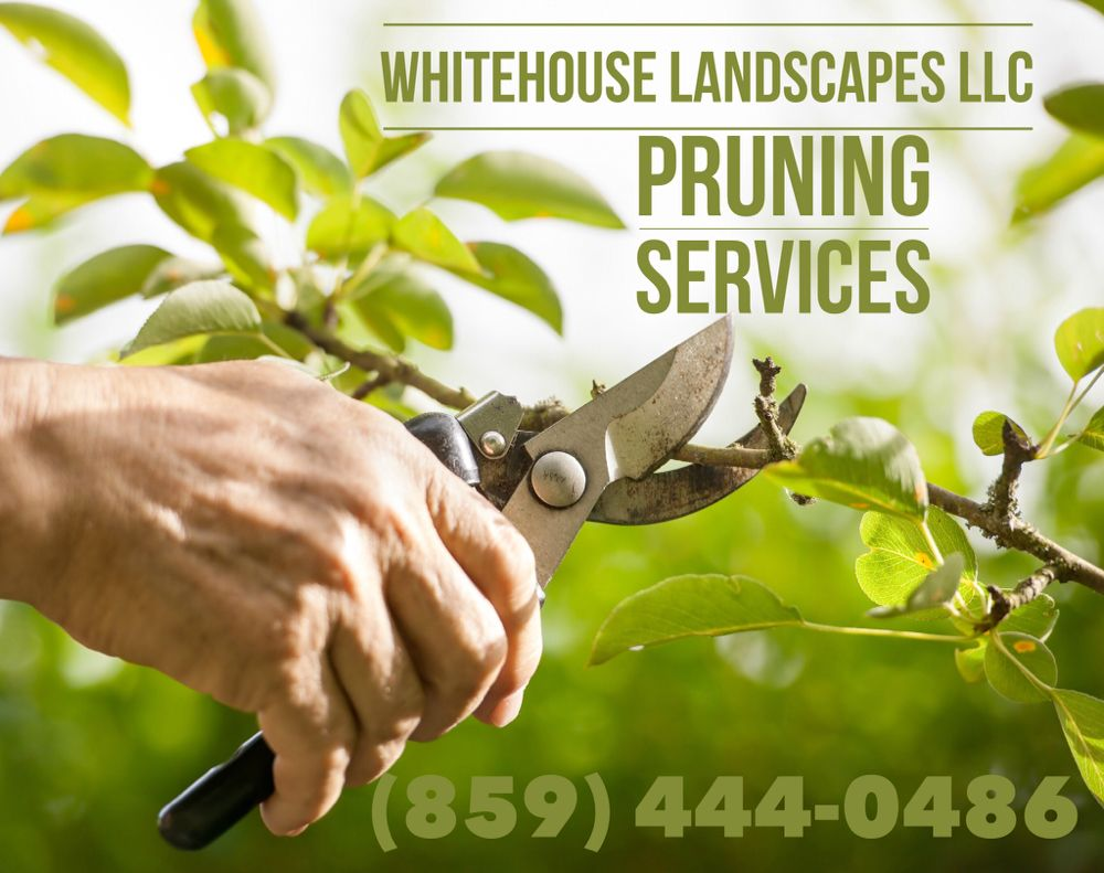 Whitehouse Landscapes: 10500 Blacksmith Pl, Florence, KY