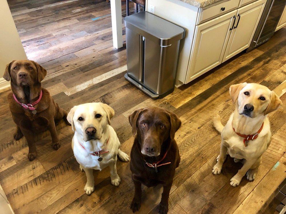 Perfect Pups Spa