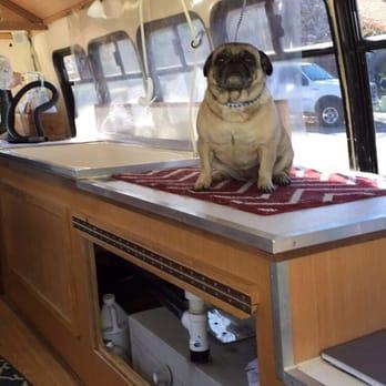 Yelp Dog Grooming San Diego