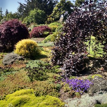Genial Photo Of Mendocino Coast Botanical Gardens   Fort Bragg, CA, United States.  Garden