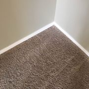 Ann Arbor Carpet Cleaning Healthy Carpets