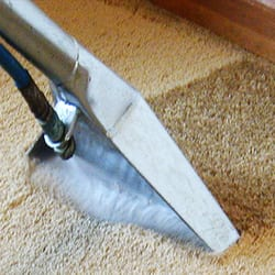Photo Of Nelson Carpet Cleaning U0026 Restoration Of Bay Terrace   Staten  Island, NY,
