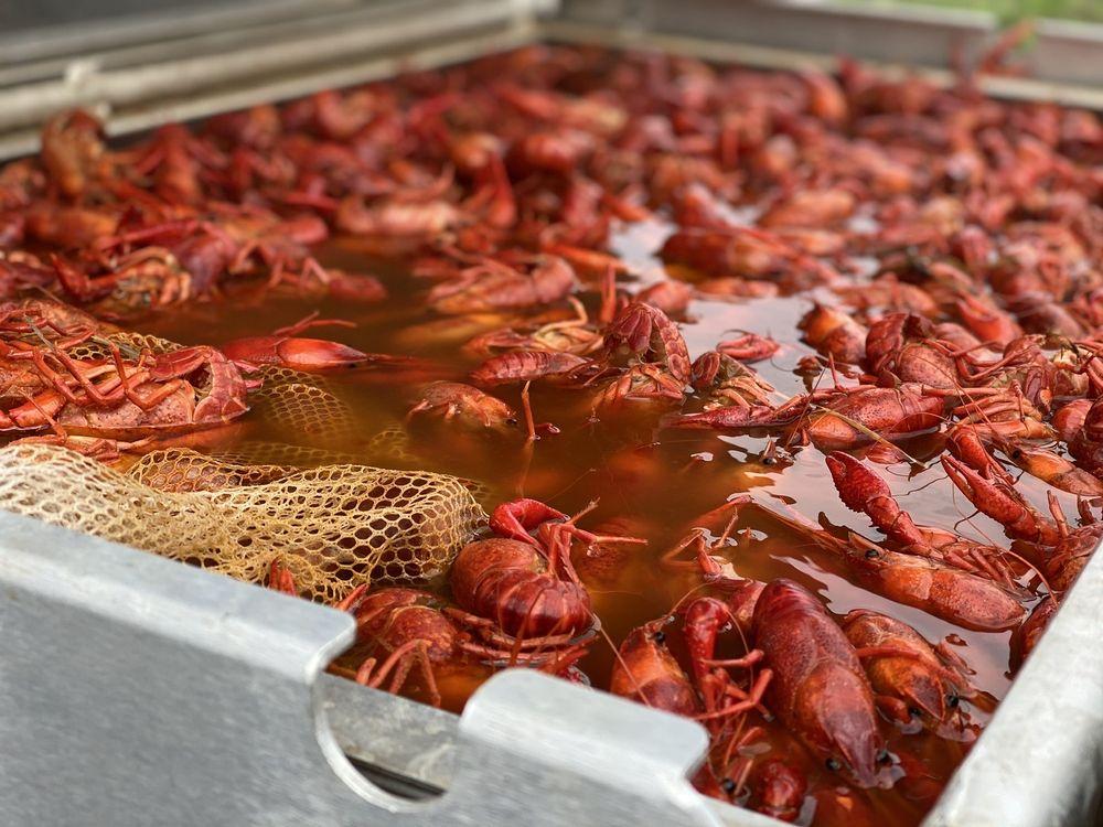 Bayou Bugs & BBQ: Anna, TX