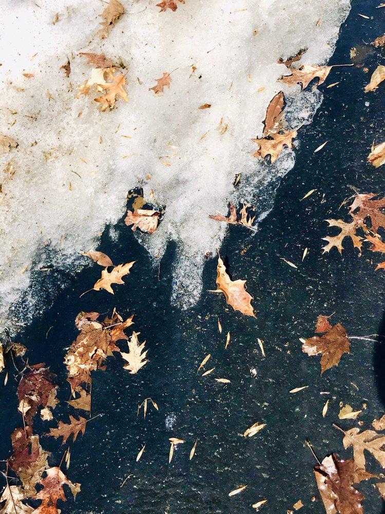 Hyland Lake Park Reserve: 8737 E Bush Lake Rd, Minneapolis, MN