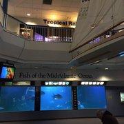Atlantic City Aquarium 182 Photos 60 Reviews
