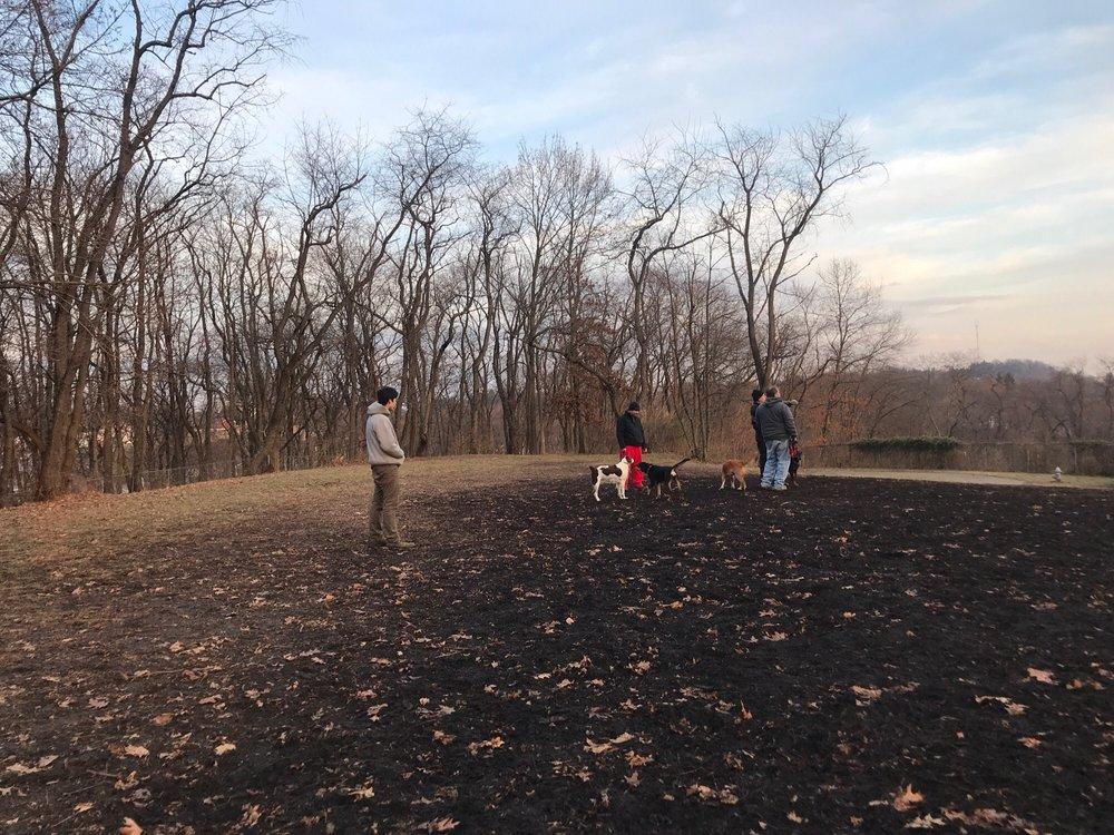 Bellevue Dog Woods: 302 Bellevue Rd, Pittsburgh, PA